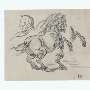 Theodore Gericault (Seguidor/Círculo) - Estudio de caballo. Dibujo de la Escuela Francesa del Siglo XIX.