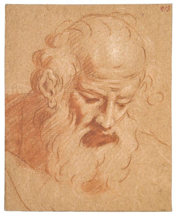 Cabeza de anciano. Goya Sanguina oscura sobre papel.