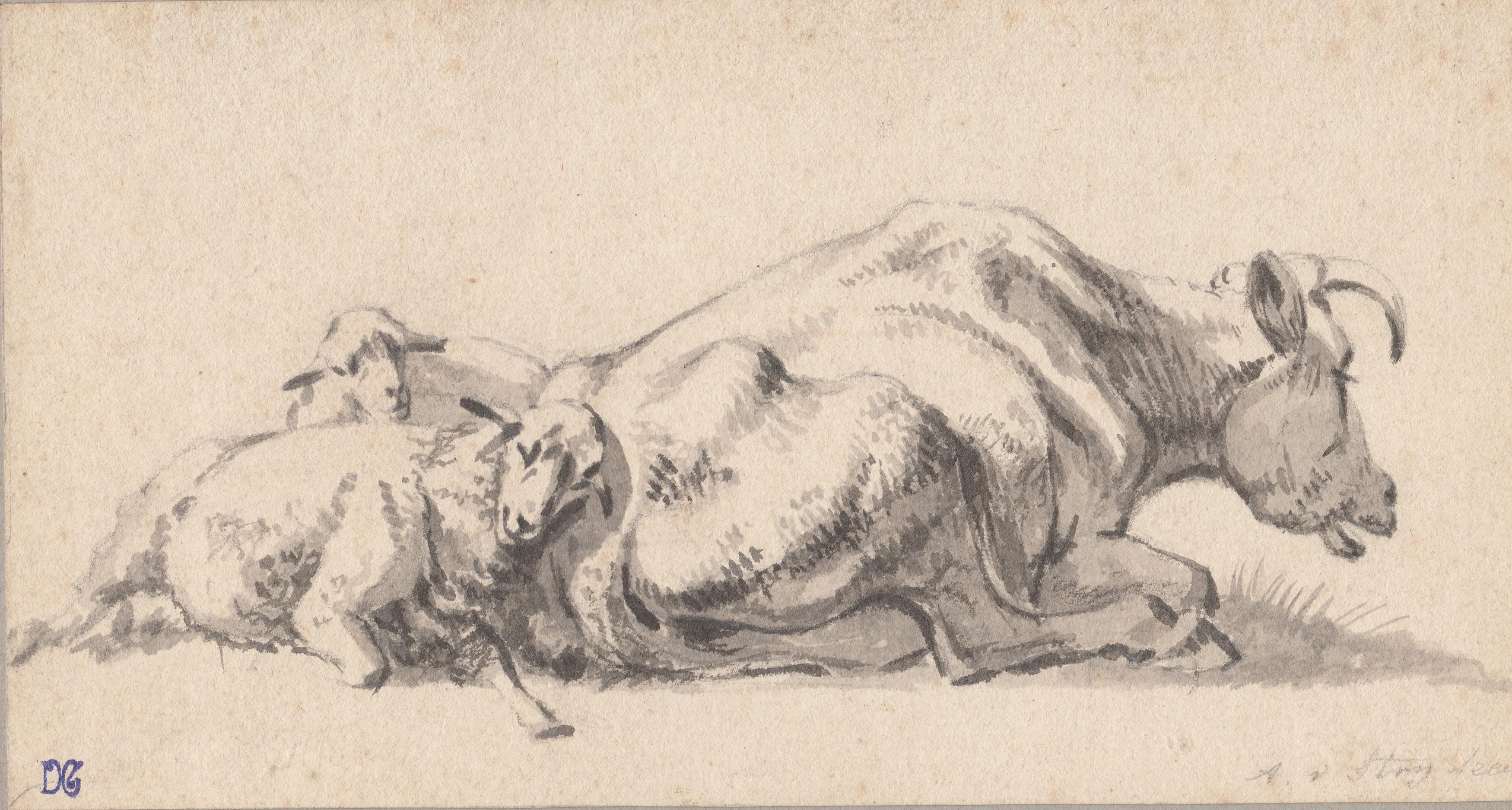 Abraham Van Strij – Estudio de animales